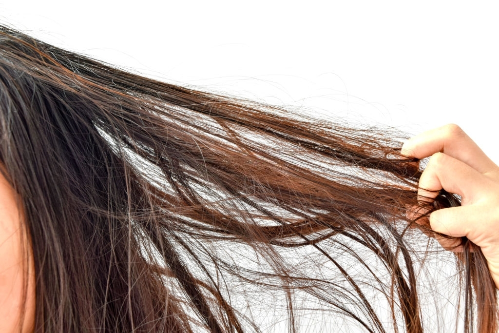 How To Keep Hair Looking Fresh And Healthy
