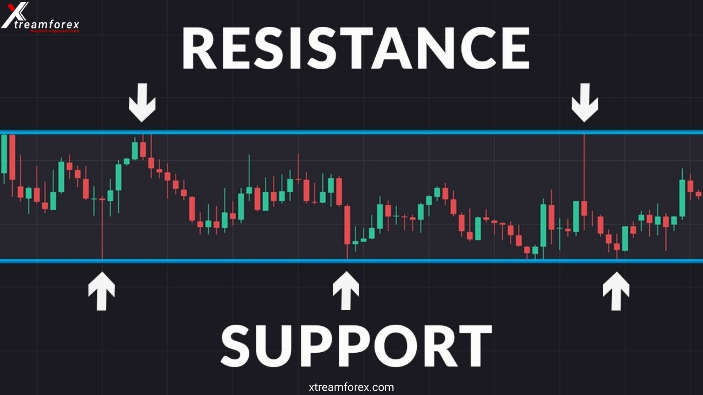 Most Important Support and Resistance in Forex Trading